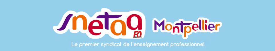 SNETAA Montpellier